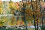 fall2x005.jpg