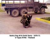 MWD Dog Photos
