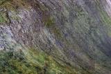 Slippery Rock.jpg