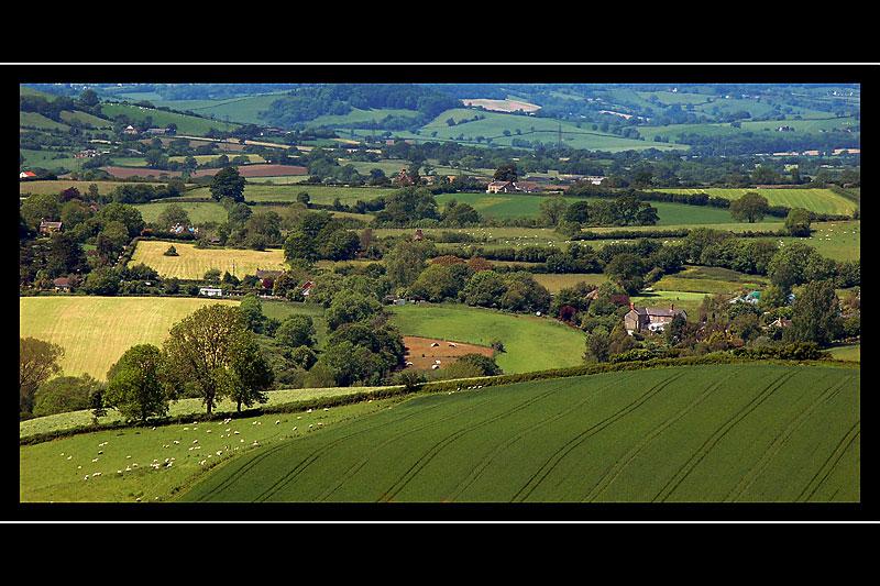 Between Mapperton and Melplash, Dorset