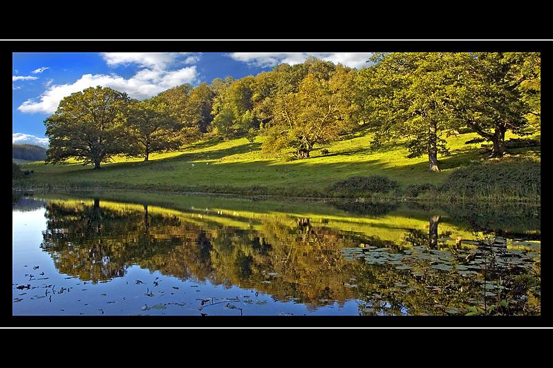 Autumnal reflections, Stourhead, Wiltshire