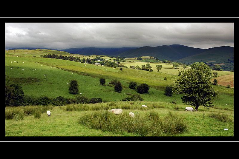 Sheep farm, Yorkshire Dales