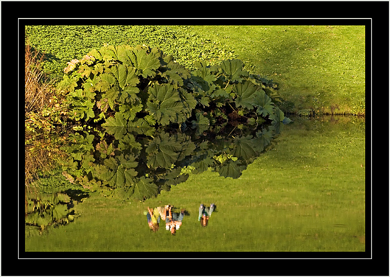 Reflection in green ~ Stourhead