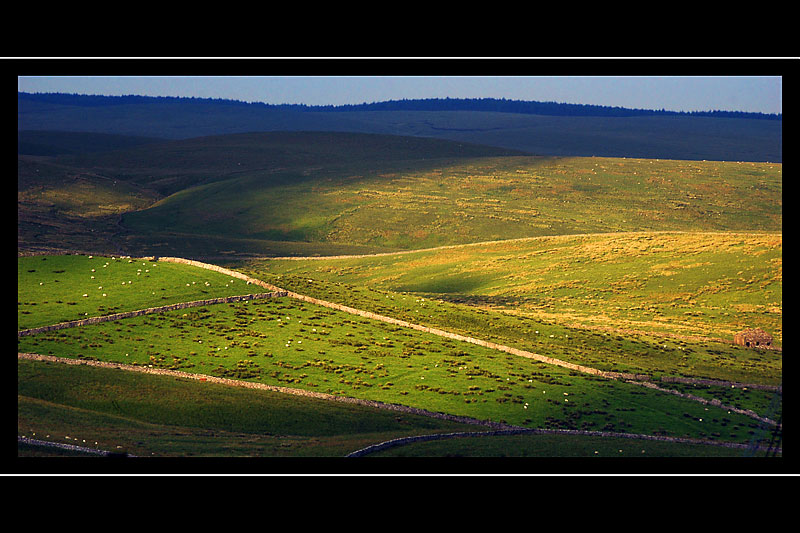 Low light and walls, Yorkshire Dales