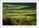 Fields near Beaminster, Dorset