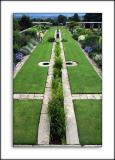 Formal gardens, Hestercombe, Somerset (2691)