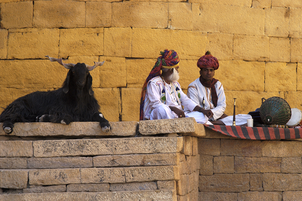 Rajasthani Musicians (Ashok Viswanathan)