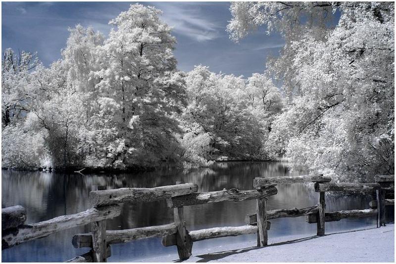 Local pond_c