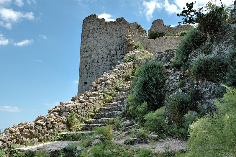 Path Among the Ruins