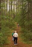 tall tree trail