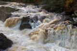 Rapids...