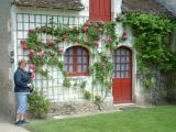 Jolie rosier grimpant sur la route nous menant au château de Chenonceau