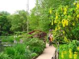 Un des nombreux sentiers permettant la visite du jardin