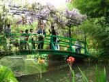 Madeleine sur le pont japonais