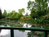 Bassin des nympheas(2)