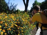 Jardin botanique, juillet 2005