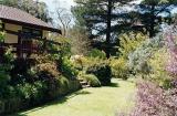 south-facing garden