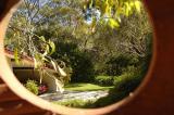 a bird's eye-view (Spring)