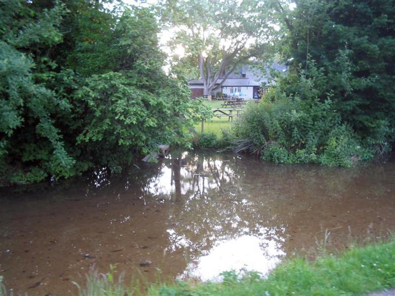 Royal oak beer garden from stream