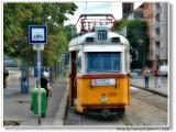 Tramway-Villamos.jpg