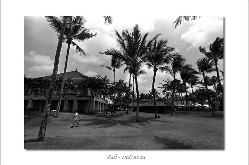 Winds of Bali