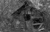 Abandoned  10/16/05