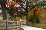 Rick Mullins Farm   11/01/05   #2