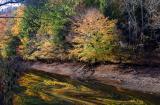 Along Crane's Nest River  11/03/05