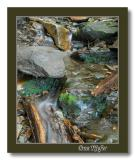 Water Stone and Log
