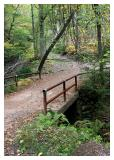 The Old Bridge in the Forest