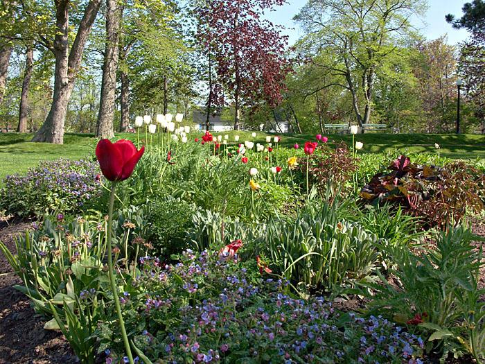 Halifax Public Gardens.