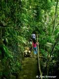 Tinago Falls Trail