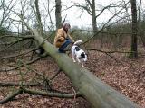 Joop's Dog Log - Monday Jan 31