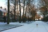 Joop's Dog Log - Sunday Feb 27