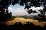 Arun Valley