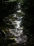 stream light