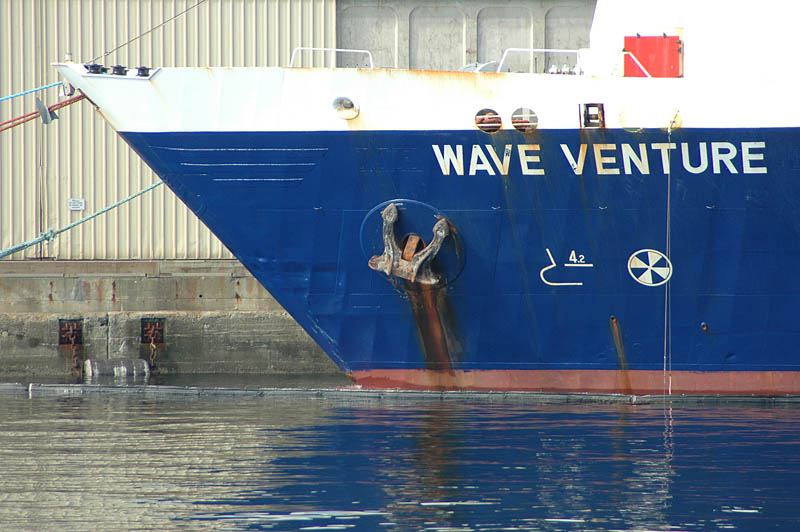 Wave Venture at Ogden Point Breakwater on Dallas Road