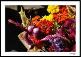 ds20051002_0341awF Flowers.jpg