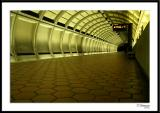 10/31/05 - Boooooods20051030_0001awF Metro.jpg