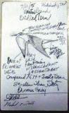 Bridled Tern - Field Card 7-11-05