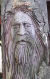 face carved in a tree stump
