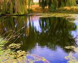 Elizabeths Baptism Pond