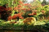 River Garden in Autumn