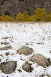 Early Season Snow up the Poudre