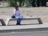 waiting at the bus stop  in Tempe Arizona