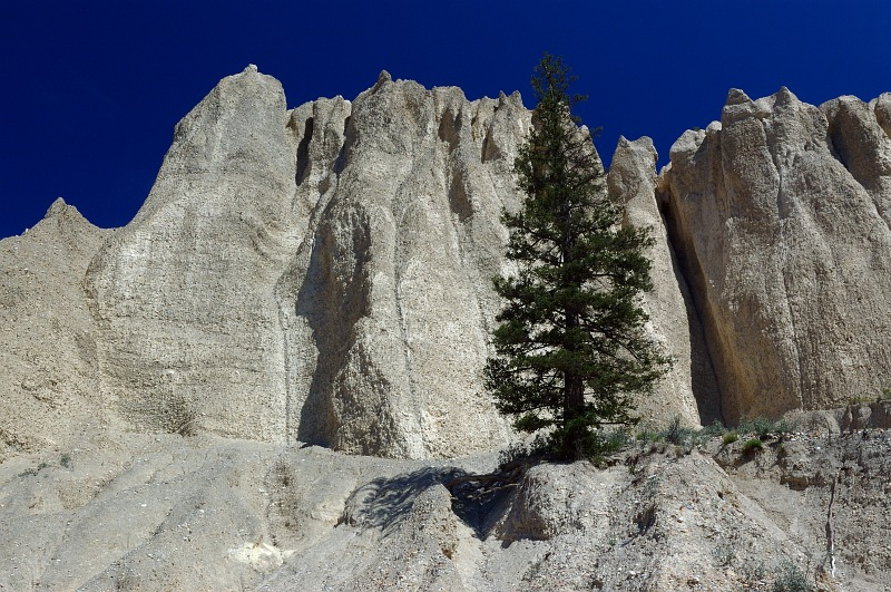 Dutch Creek Hoodoos 3.jpg