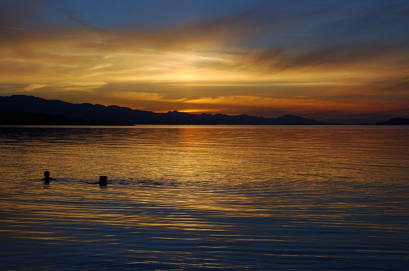 Qualicum sunset swimmers.jpg