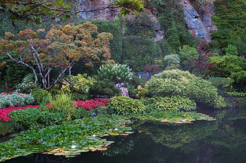 Butchart water garden.jpg