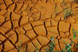 Cracked Ochre 2.jpg