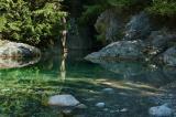 Lynn Creek.jpg